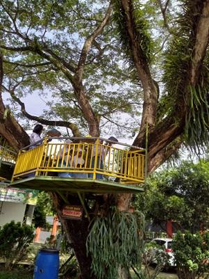 Pembuatan Gazebo dan Rumah Pohon